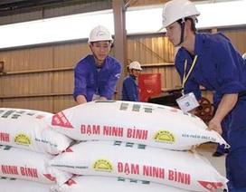 Gần 24.000 nhân viên Vinachem có lương bình quân hơn 8,2 triệu đồng/tháng