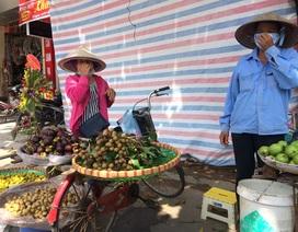 """Dân Hà Nội """"ăn quả lừa"""" nhãn lồng Hưng Yên """"xịn"""""""