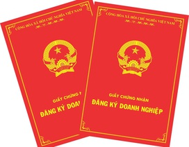 Bộ Kế hoạch và đầu tư báo cáo Thủ tướng lùm xùm tại Công ty TNHH Kim Anh