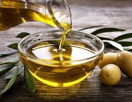 Phát hiện chất trong dầu ô liu có thể ngăn ngừa ung thư não