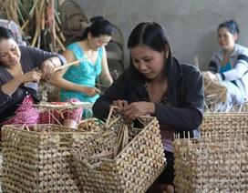 Dành 4.000 tỷ đồng để đào tạo nghề nông nghiệp cho 1,4 triệu lao động