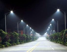 Ánh sáng đèn LED có thể tác động lớn đến động vật hoang dã