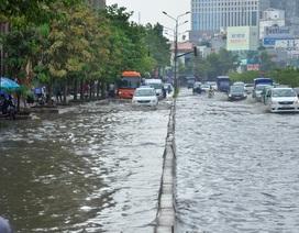 Bí thư Nguyễn Thiện Nhân nghe hiến kế xử lý rốn ngập TPHCM