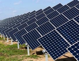 Điện mặt trời liệu có thay thế được điện than?