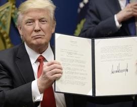 Mỹ ngừng lệnh cấm người tị nạn