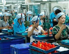Xoa dịu sau đề xuất tăng VAT, Bộ Tài chính muốn giảm một loạt loại phí