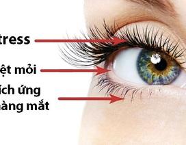 7 cách trị chứng giật mắt
