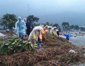 Chủ tịch Đà Nẵng gửi thư cảm ơn người dân chung tay dọn vệ sinh đón APEC