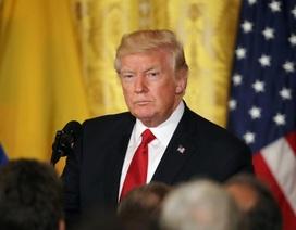 """Tổng thống Trump tìm người giúp """"dập tắt"""" khủng hoảng"""