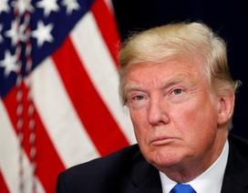 """Ông Trump lệnh """"kiểm soát gắt gao"""" người nhập cư sau vụ khủng bố New York"""