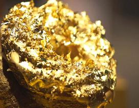 Bánh rán dát vàng 24k đắt nhất thế giới