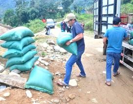 Quảng Nam: Hỗ trợ hơn 1.150 tấn gạo cho học sinh ở khu vực đặc biệt khó khăn