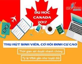 Các chính sách thu hút sinh viên, cơ hội định cư cao khi du học Canada 2017
