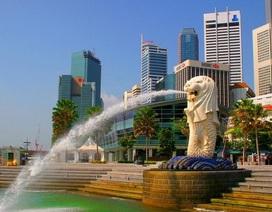 Trò chuyện cà phê cùng trường TMC Academy - Hỗ trợ vé máy bay một chiều tới Singapore