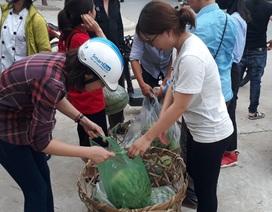 """Bạn trẻ xứ Thanh """"đội nắng"""" bán dưa hấu giúp bà con Quảng Ngãi"""