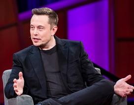 Elon Musk đã huy động được 27 triệu USD để kết nối não người với máy tính