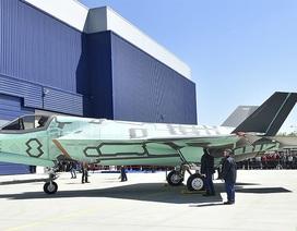 """""""Chim sắt"""" đắt đỏ F-35B lắp ráp tại Italia lần đầu ra mắt"""