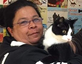 Mèo đoàn tụ với chủ sau 12 năm lưu lạc