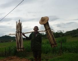 Cụ ông 70 tuổi gánh củi đi 20 km để bán với giá... 20 nghìn đồng