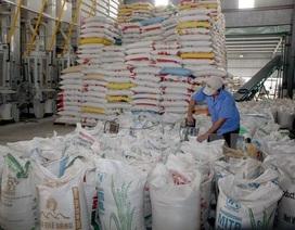 Xuất 64 tấn gạo từ nguồn dự trữ quốc gia cho tỉnh Sơn La
