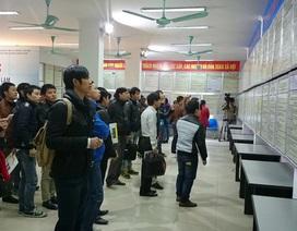 Năm 2016, Sàn GDVL Hà Nội: Hơn 50.000 chỉ tiêu tuyển dụng được rao tuyển