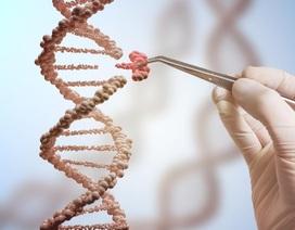 Đột phá: Công nghệ chỉnh sửa gen sửa chữa đột biến trong phôi người