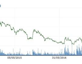 """Cổ phiếu Tân Tạo """"lên đồng"""" sau một tuyên bố của ông Đặng Thành Tâm"""