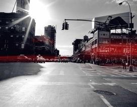 Những luật giao thông kỳ cục trên thế giới