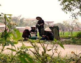 Bí ẩn những chiếc giếng cổ không bao giờ cạn nước ở Vĩnh Phúc