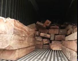 CSGT bắt xe ô tô chở số lượng lớn gỗ gõ