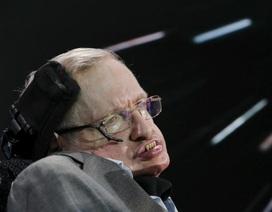 Stephen Hawking cảnh báo Trí tuệ nhân tạo có thể thay thế hoàn toàn con người