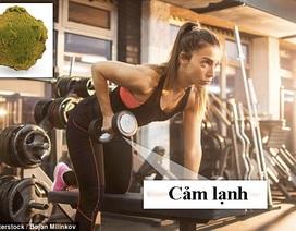 Những nguyên tắc số 1 giúp tránh nhiễm bệnh từ phòng tập gym