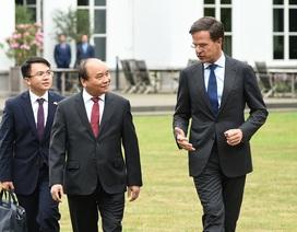 Thủ tướng Việt Nam - Hà Lan đánh giá về 5 lĩnh vực hợp tác ưu tiên