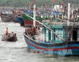 Bão số 2 tiến vào đầt liền, hàng nghìn du khách bị kẹt lại huyện đảo Cô Tô