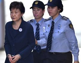 """Cựu Tổng thống Hàn Quốc """"gánh"""" mọi trách nhiệm thay cấp dưới"""