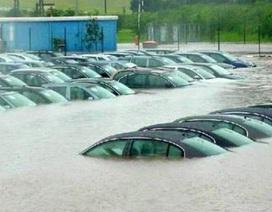 Nhiều đại lý ô tô bị ngập trong bão Harvey ở Mỹ, người mua xe nhập nên thận trọng