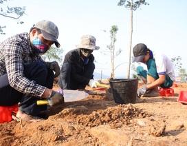 Quảng Ngãi: Phát hiện dấu tích kiến trúc Chămpa