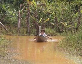 Người dân phải bơi thuyền vào nhà vì đường ngập quanh năm!