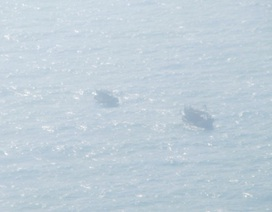 Nỗ lực tìm kiếm một ngư dân mất tích trên biển ngày mùng 5 Tết