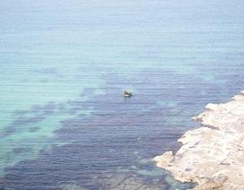 Dân lo ngại Nhà máy Bột - Giấy xả thải làm ô nhiễm biển