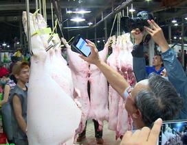 """TPHCM: Mới chỉ có thể truy xuất nguồn gốc 35% thịt heo """"đầu nguồn"""""""