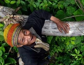"""Ông lão 20 năm """"sống tốt"""" giữa rừng sâu Quảng Ngãi"""