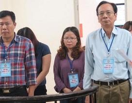 Được thay đổi tội danh, cựu Giám đốc Halico lĩnh 36 tháng tù