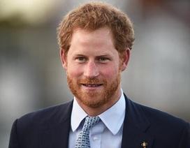 Hoàng tử Harry tiết lộ không ai trong Hoàng gia Anh muốn kế vị ngai vàng