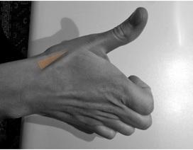Bạn biết gì về hõm lào giải phẫu trên bàn tay?