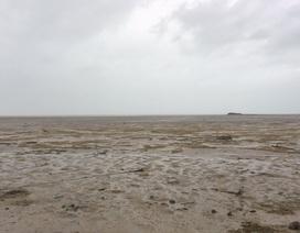 """Hy hữu siêu bão Irma """"hút cạn"""" nước biển ở Bahamas"""