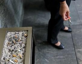 Khói thuốc tác động đến tế bào phổi như thế nào?