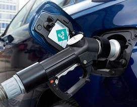 Các hãng ô tô Nhật hiệp lực xây dựng cơ sở hạ tầng cho xe hydro