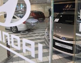 Hyundai và Kia bị bắt buộc triệu hồi 240.000 xe