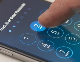 Cảnh giác vì hơn 300 triệu tài khoản iCloud của Apple bị lộ mật khẩu